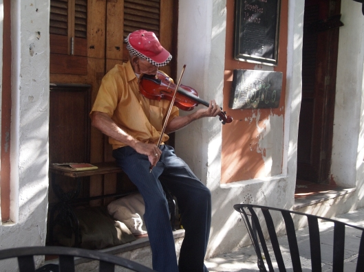 Violinist at Nadine Cafe